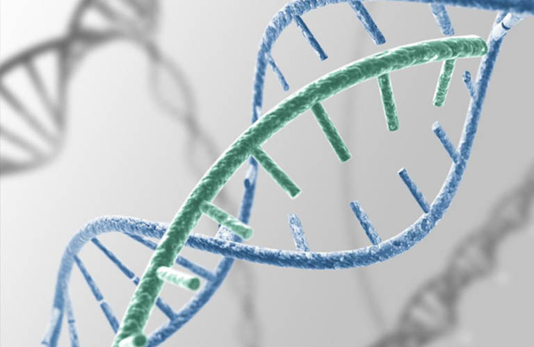 di truyền ảnh hưởng đến các vấn đề ngoài da