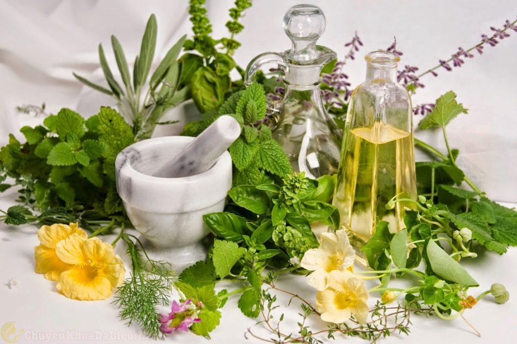 Một số bài thuốc Đông Y chữa trị bệnh ngứa da toàn thân