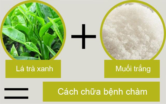 Cách chữa bệnh chàm bằng trà xanh