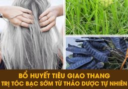 Cách trị rụng tóc từ thảo dược
