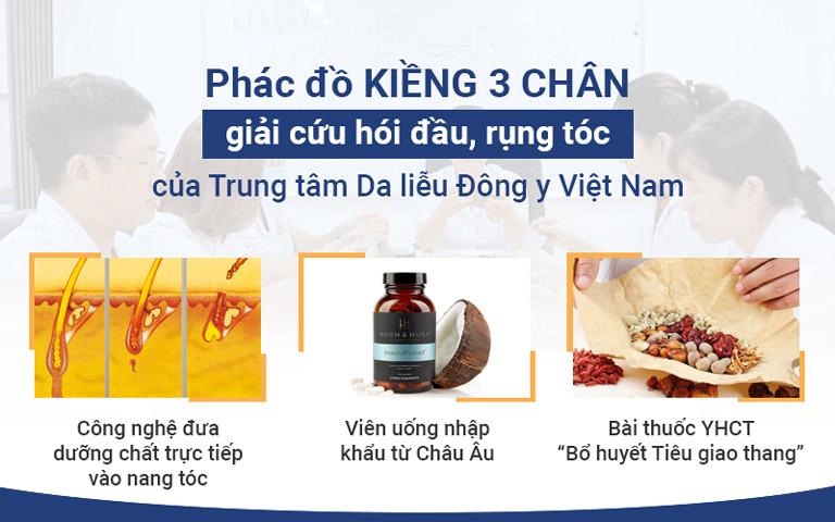 Phác đồ điều trị hói đầu, rụng tóc của Trung tâm Da liễu Đông y Việt Nam