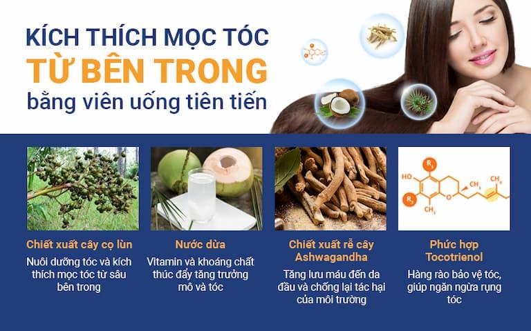 Viên uống thảo dược nhập khẩu được kết hợp giúp hỗ trợ quá trình mọc tóc