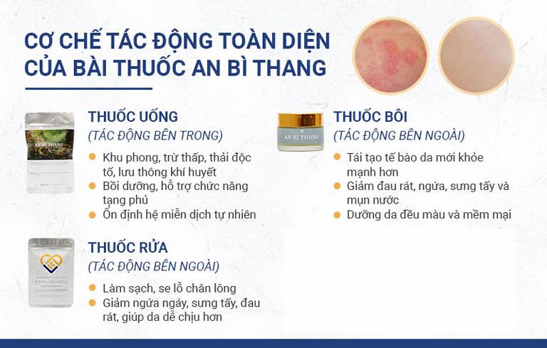 3 chế phẩm chính trong điều trị viêm da tiếp xúc của bài thuốc An Bì Thang